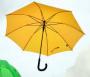 cisco-umbrella-app.png